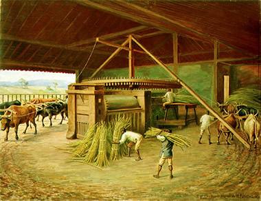 Benedito Calixto - Moagem da Cana na Fazenda Cacheira e438f928c13
